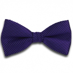 Purple Bow Tie with Stripe